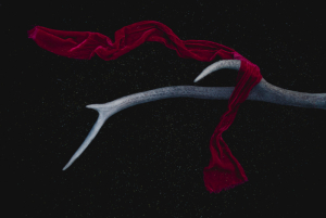 antler and red cloth